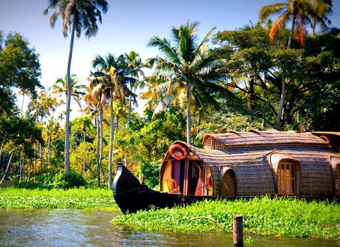 Wayanad and its wonders. It is a gorgeous tourist destination in Kerala