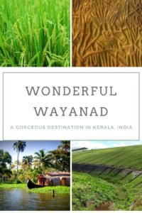 Check out Wayanad and its wonders. It is a gorgeous tourist destination in Kerala
