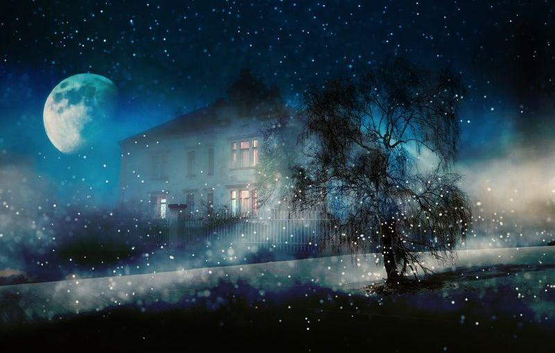 The Night Visitors Book Review - Carol Goodman