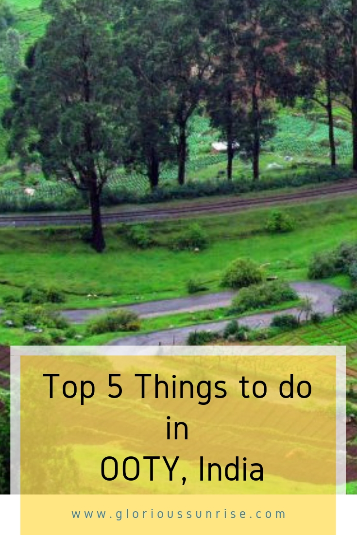 Top 5 things to do in Ooty, a charming hill station in South India