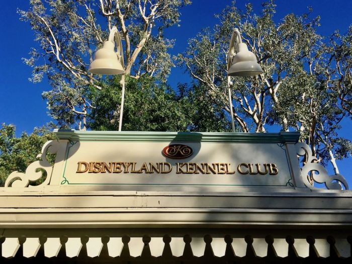 disneyland tips for pet owners