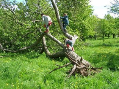 Children at Longney