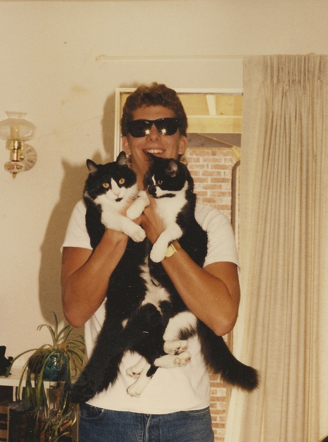 We always had cats to love on. Here Steve is enjoying my cats Festus and Miss Kitty in one of my first apartments