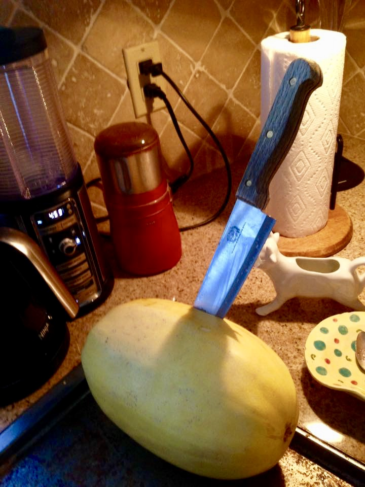 Emergency Responder for Squash Disaggregation: a Tale of Triumph Over Gourd-Adversity