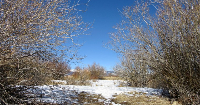 Simple Pleasures: Cline Ranch State Wildlife Area in Como, CO