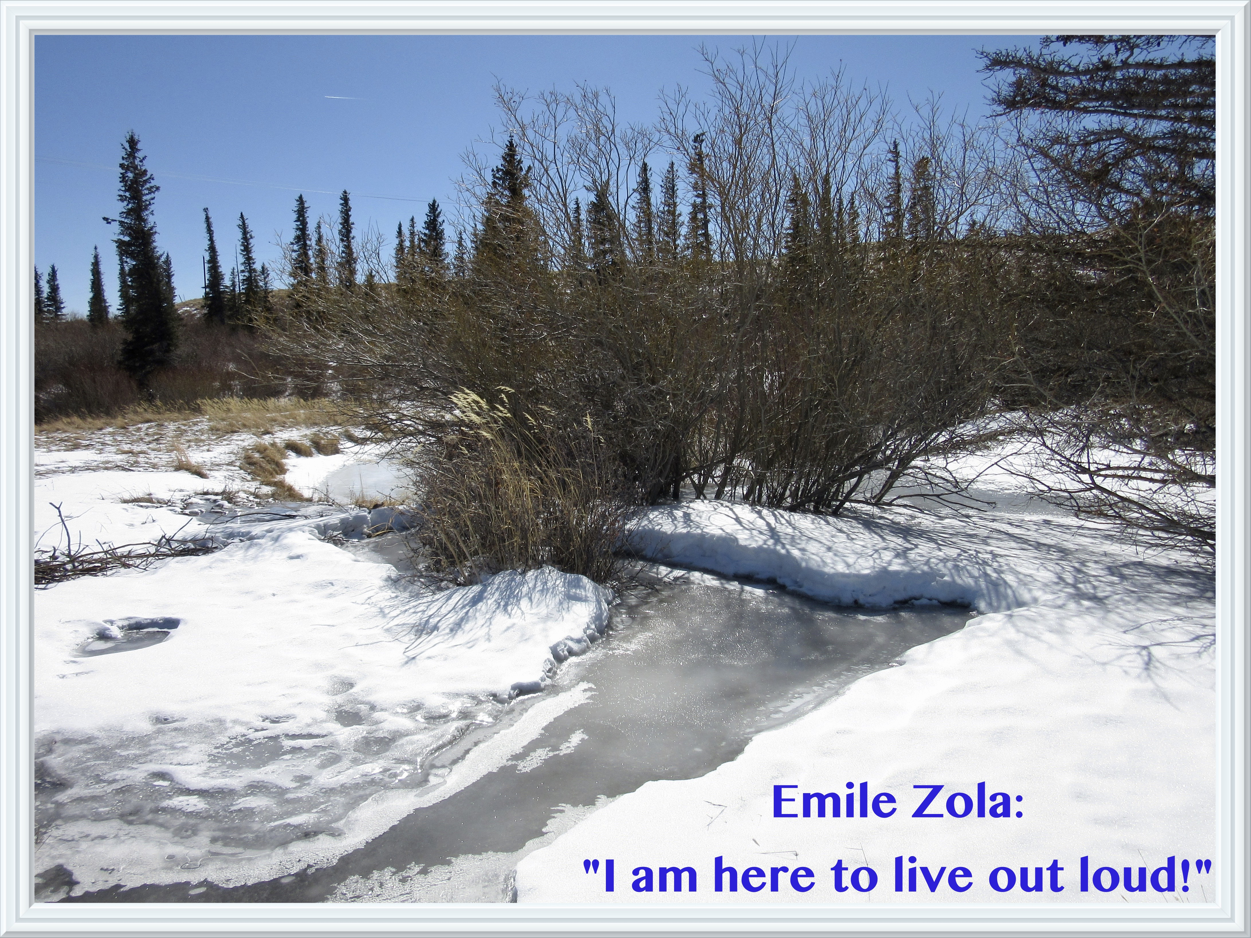 """Emile Zola's """"Living Out Loud"""" and My Blog's Second Anniversary"""