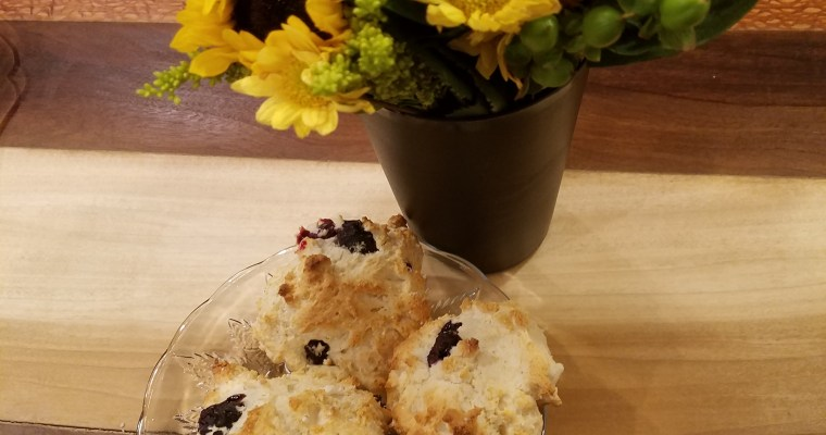 "Bisquick: A Justifiable Exception to the ""Low on the Food Chain"" Rule – AKA – Don't These Blueberry Biscuits Look Good?"