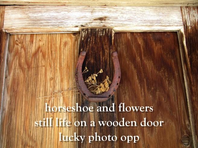Wooden Door Still Life Haiku