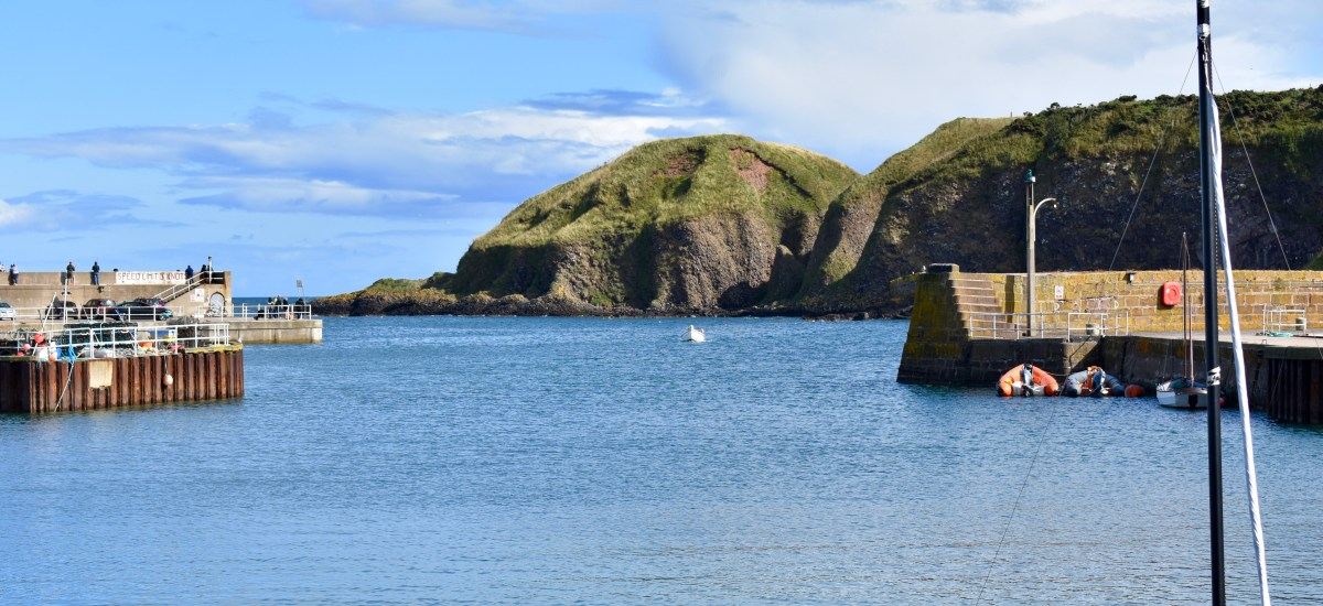 January Dreaming: Scotland's Stonehaven Harbor in August