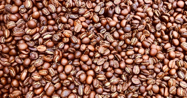 Coffee Beans: From A Neon Moon Dream To Reality