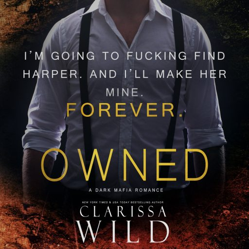Teaser: Owned by Clarissa Wild