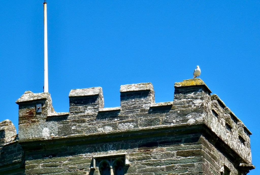 Seagull perched on a church tower against blue sky