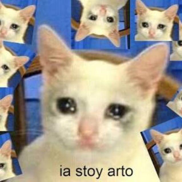Tazas Para Cafe De Memes En Mercado Libre Mexico