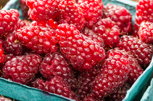 Gourmet Traveller: Tasmanian Berries