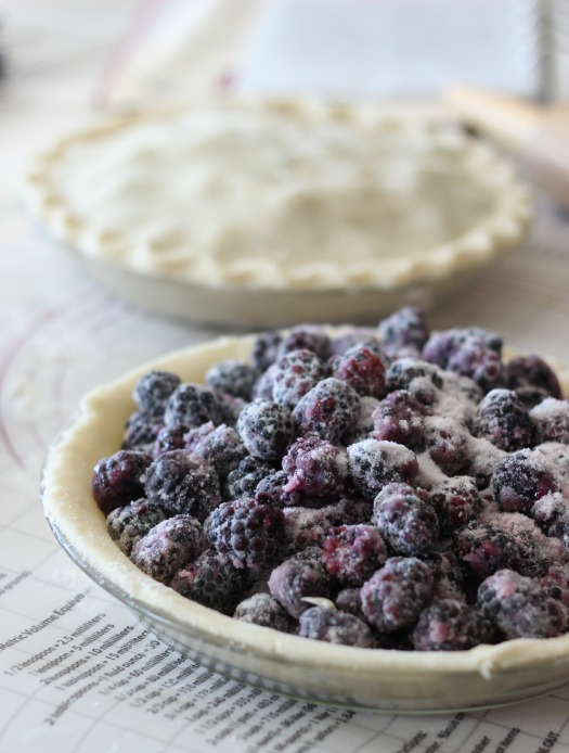 You can substitute any berry in this blackberry pie recipe and adjust the sugar accordingly. This is adelicious and flaky summer pie made with sun ripened blackberries. What berry would you use?