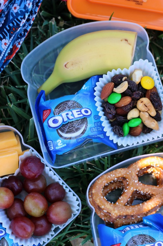 Now that school is out for the summer, turn those plastic sandwich containers into the perfect on the go snacks for outings to the park, the beach, or on car rides!