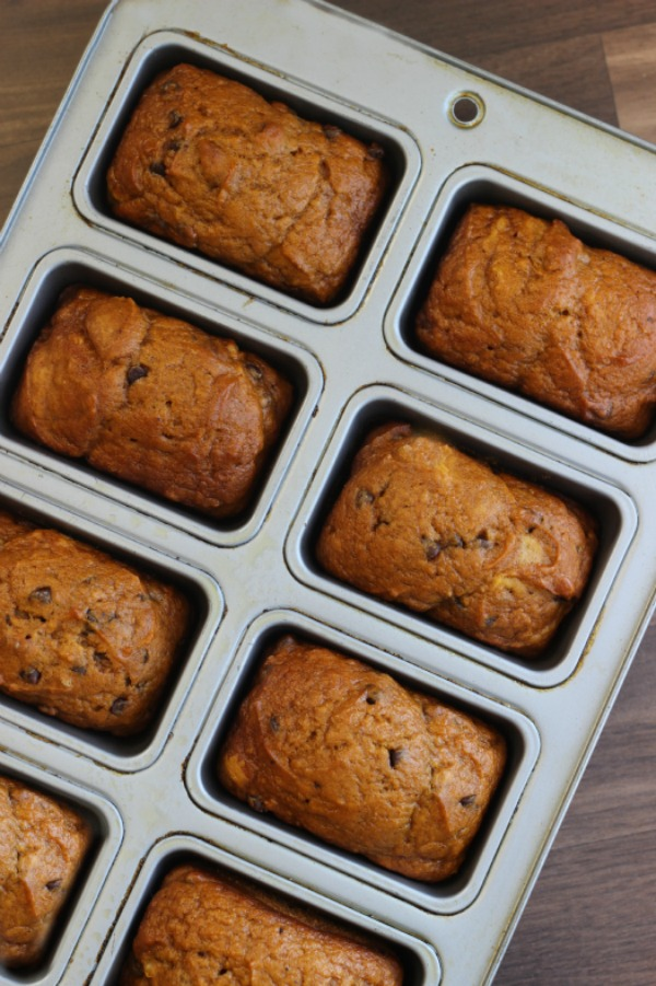 These mini pumpkin chocolate chip loaves are fun to snack on and quick to make. Mini chocolate chips, pumpkin, walnuts, nutmeg, and a burst of cinnamon combine to bring together the flavors of fall.