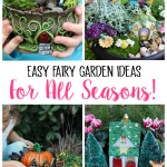 Easy Fairy Garden Ideas For All Seasons Gluesticks Blog