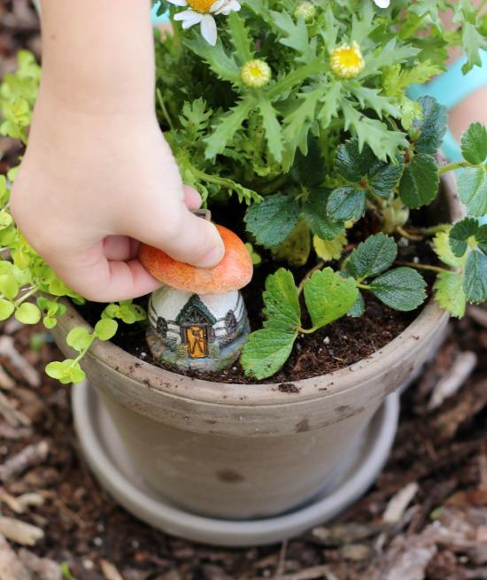 Whimsical Mini Flower Gardens
