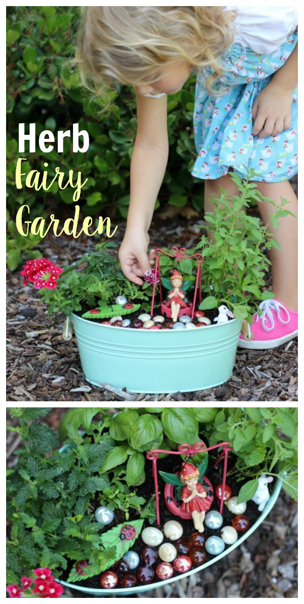 An herb fairy garden is as practical as it is pretty! Trim the leaves of the herbs off to use in recipes and watch the flowers bloom. Such a fun way to brighten up the kitchen or yard.