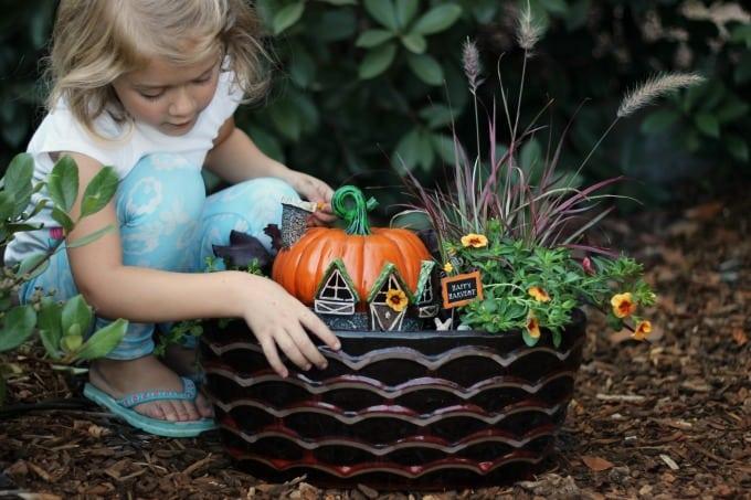 Harvest Fairy Garden