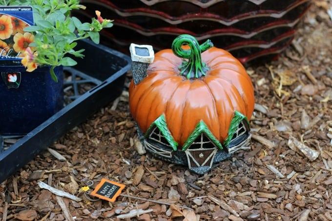 Create a beautiful fall fairy garden with the seasonal foliage of fall and a fairy garden pumpkin house!