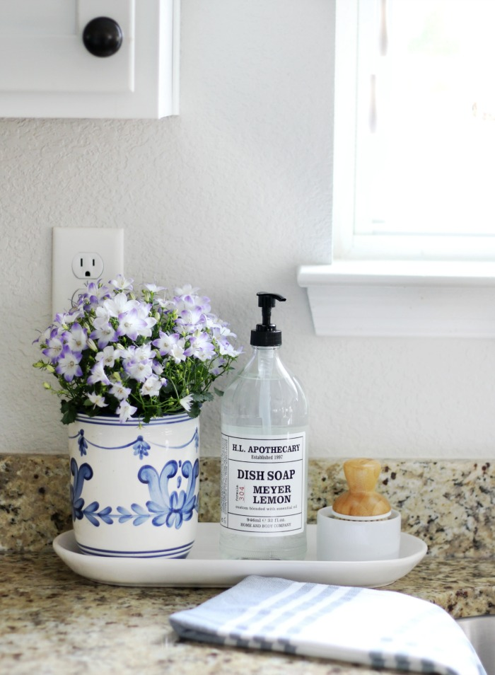 countertop styling kitchen sink dish soap bottle scrubber on plate