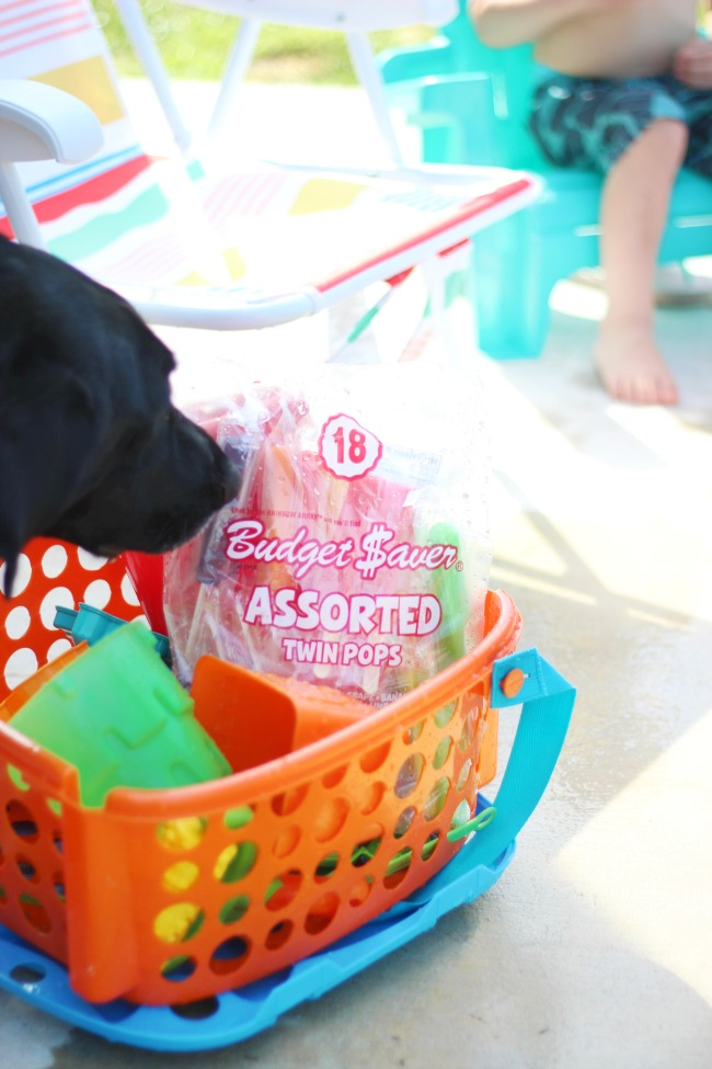 backyard activities for kids: basket with sand toys and bag of twin pops