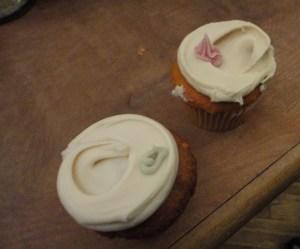Babycakes NYC cupcakes
