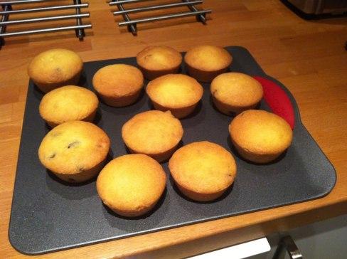 photo of Delicious Alchemy Vanilla Sponge Mix cakes