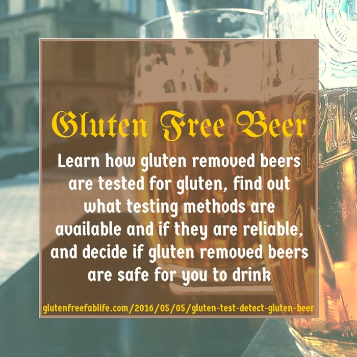 In this follow up to Gluten Free Beer: The Basics, I look into gluten test methods and their validity. Is that beer really gluten free? Find out!