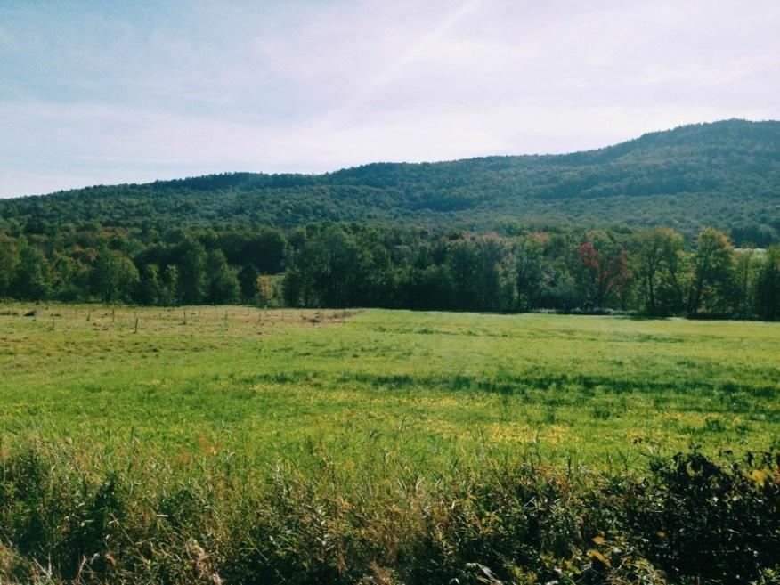 farms- Bliss Ridge