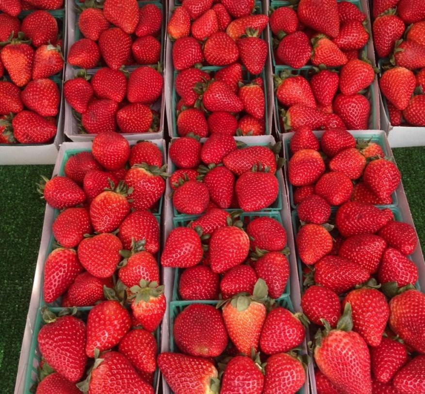SLO to SB- strawberries