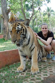 TIgers!! Chiang Mai, Thailand