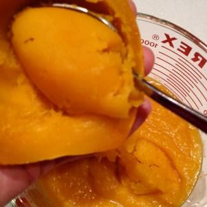 Measuring the squash/pumpkin puree