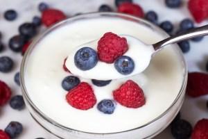 Chronic Fatigue Syndrome: Gut Healing Yogurt