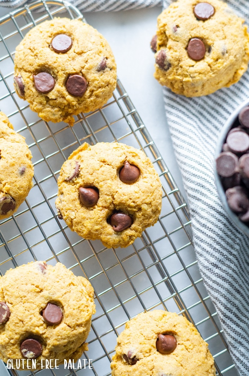 orange vegan pumpkin cookies with chocolate chips on a wire cooling rack