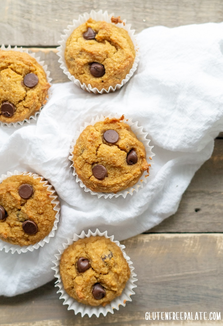 top down view of paleo pumpkin muffins with chocolate chips on a white kitchen towel