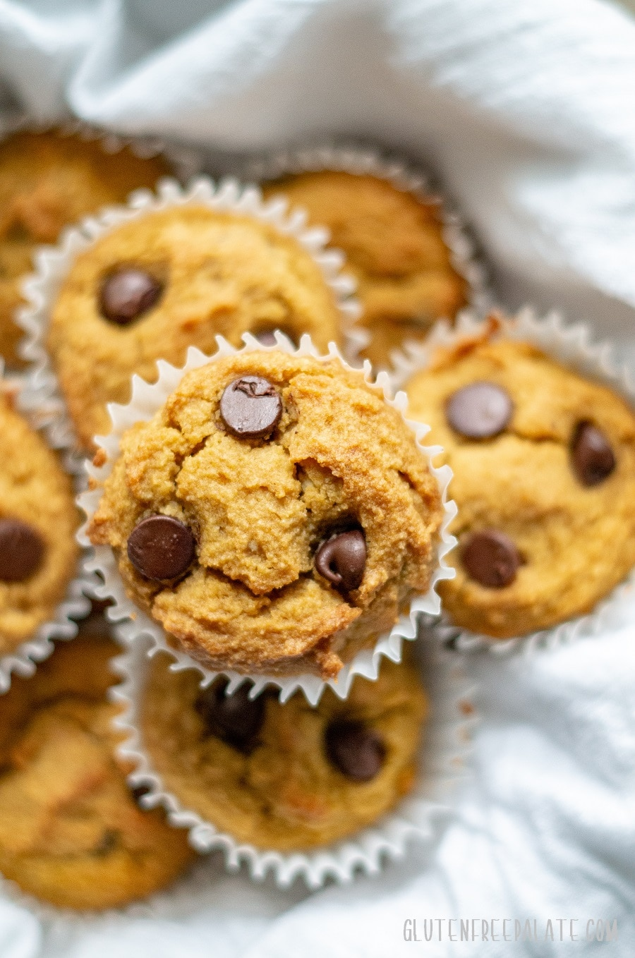 top down view of paleo pumpkin muffins with chocolate chips, in a bowl