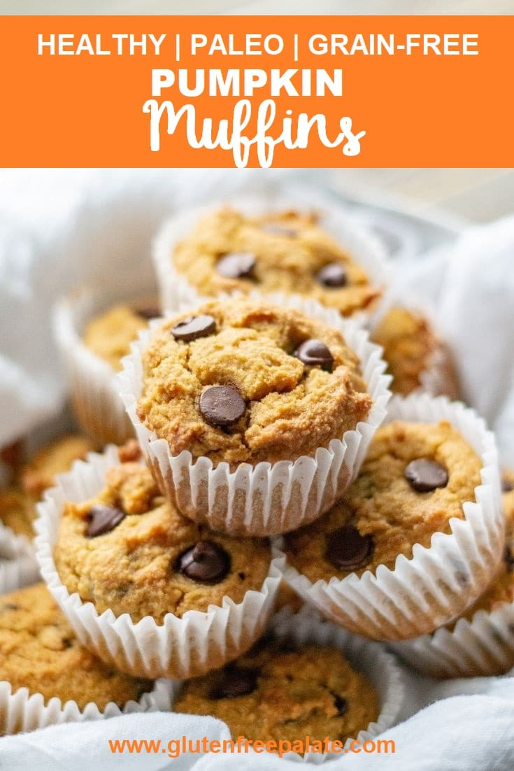 a pinterest pin of pumpkin muffins with chocolate chips with the words healthy paleo grain-free pumpkin muffins written on top