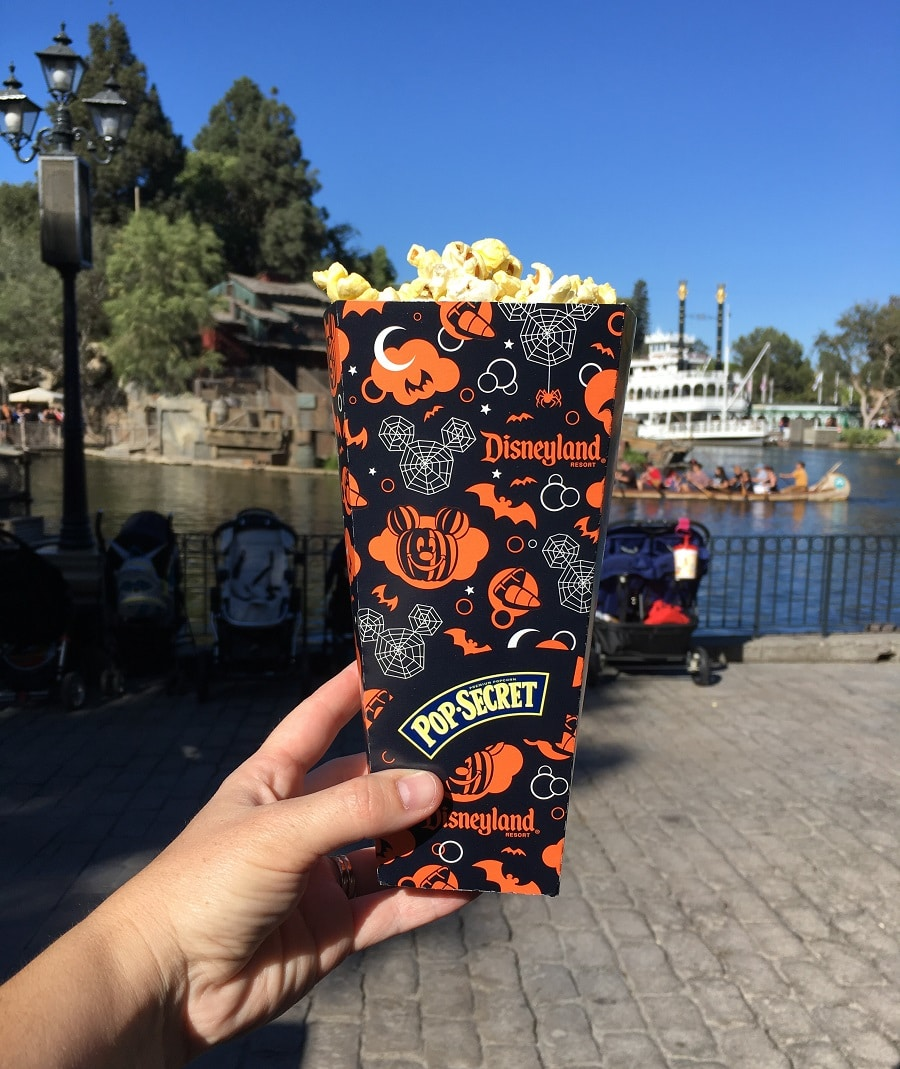a hand holding a tub of popcorn at disneyland