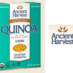 Gluten free organic pasta