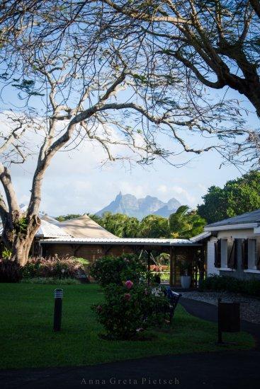 Aventure_de_Sucre_Mauritius (FILEminimizer)