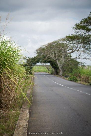 Straße_Mauritius-2 (FILEminimizer)