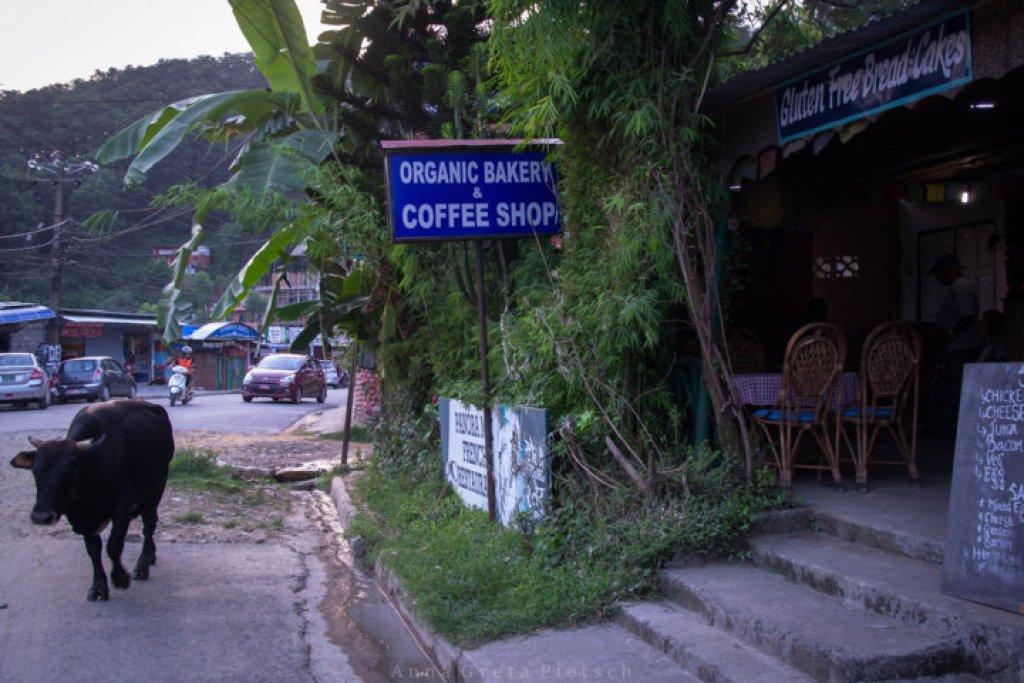aussenansicht_panoramix_pokhara_nepal