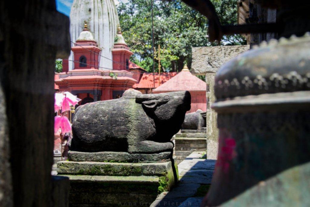 shiva_pashupatinath-_nepal