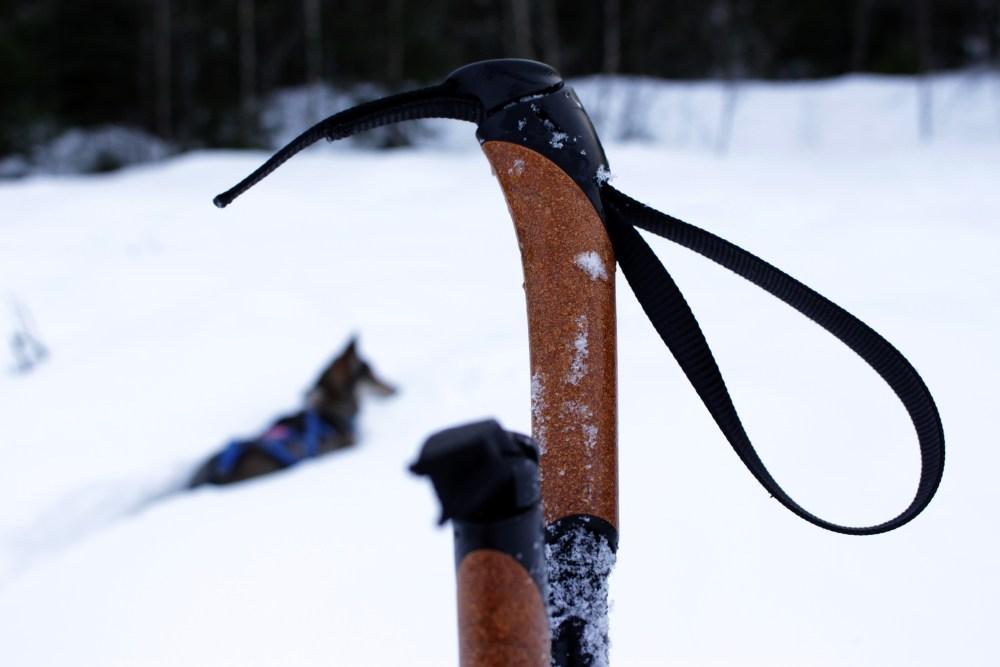 Skitur og kjøttkaker i brun saus 037