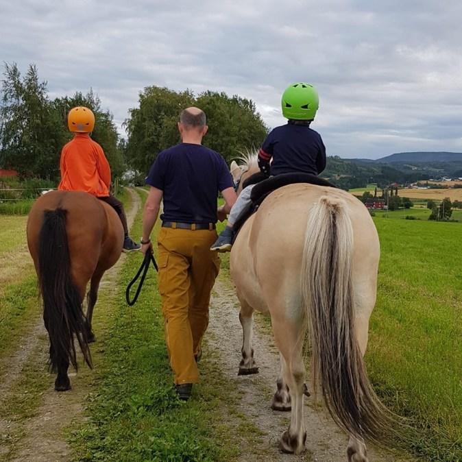 hverdagspuls-hest2
