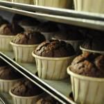 Muffin sans gluten BioRevola