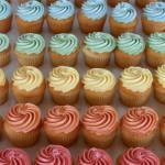 Gluten Free Cupcake Portland New Cascadia